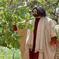 REMIX - Biblia Noul Testament Marcu  Capitolul 11  Partea V-a