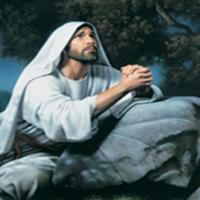 REMIX - Biblia Noul Testament Marcu  Capitolul 14  Partea XI-a