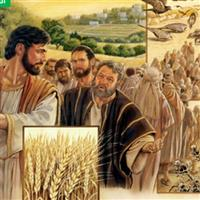 REMIX - Biblia Noul Testament Luca  Capitolul 8  Partea V-a