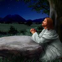 REMIX - Biblia Noul Testament Luca  Capitolul 22  Partea VIII-a