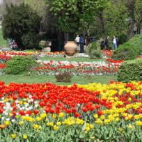 Bucuresti-10 parcuri si gradini