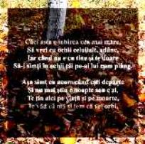 ADRIAN  PAUNESCU-poezii de dragoste (II)
