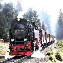 Cu Nikonul la drum.Cu trenul pe Brocken.  Harz