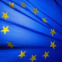 Europarlamentarele sub lupa