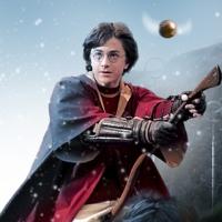 Twilight Vs Harry Potter simboluri