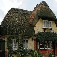 Going Home - Case deosebite cu acoperişuri din paie