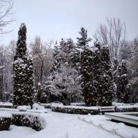 iarna onesteana