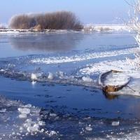 Iarna geroasa