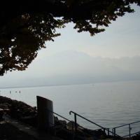 Tara cantoanelor 35 - Montreux I
