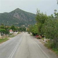 itinerar balcanic 45 Grecia - Zakynthos caretta caretta