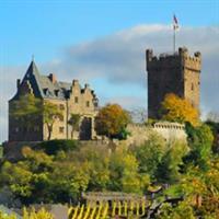Castele,cetati,ruine pe valea Rhinului