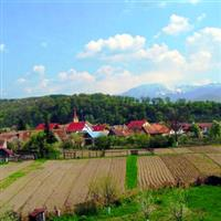 Cetatea Castrum Lanchron - Talmaciu, Jud. Sibiu.