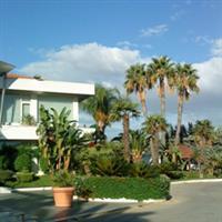 Sicilia si palmierii