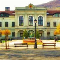 Slovacia (Revuca și împrejurimi) - Steve