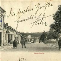 Scrisori din Bucovina