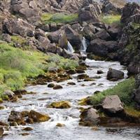 Islanda-Parcul National Thingvellir