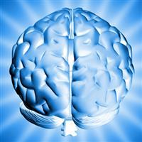 Creierul nostru - o minune a naturii