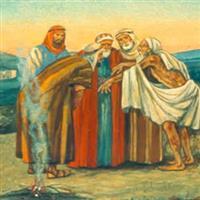 REMIX - Biblia Vechiul Testament Cartea lui Iov Cap. 12