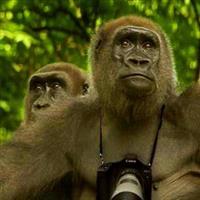 Animal Fotograf. 02