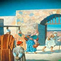 REMIX - Biblia Vechiul Testament Cartea lui Iov Cap. 30