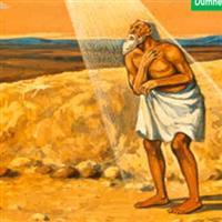 REMIX - Biblia Vechiul Testament Cartea lui Iov Cap. 39