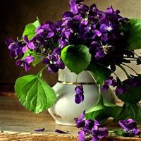 Un gând bun de florii