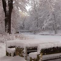 A inceput din nou sa ninga