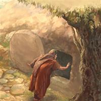 REMIX - Biblia Noul Testament Matei  Capitolul 28  Partea I