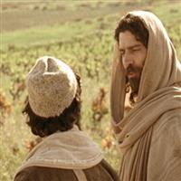 REMIX - Biblia Noul Testament Marcu  Capitolul 12  Partea I