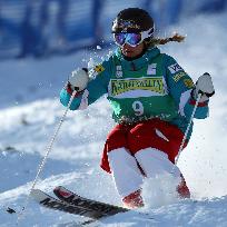 Din istoria skiului alpin.Partea doua
