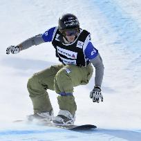 Din istoria skiului alpin.Snowboarding.