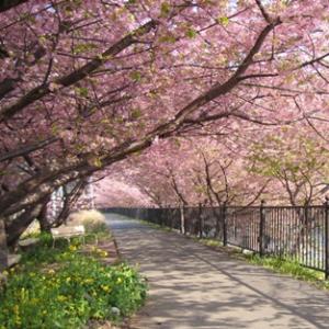Cântec de primăvară - Nichita Stănescu; Muzica: Yiruma – Spring Time